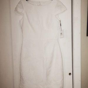 NWT Calvin Klein White dress size 6